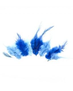 Feathers Blue