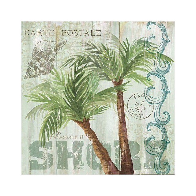 servet Palmbomen