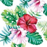 servet Hibiscus