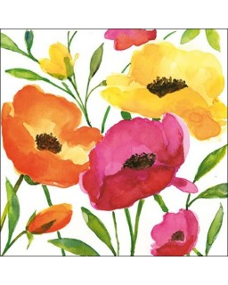 Aquarell Poppy