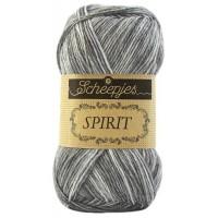 Spirit 301 Orca