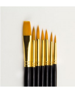 Artist Brush Set