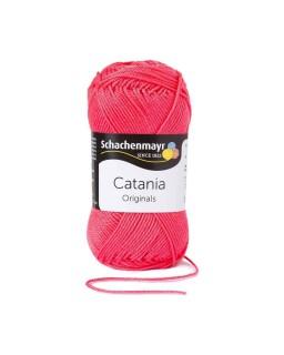 Catania 256 Raspberry