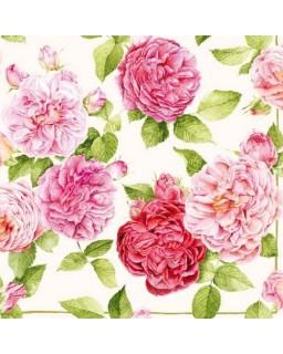 servet rozen
