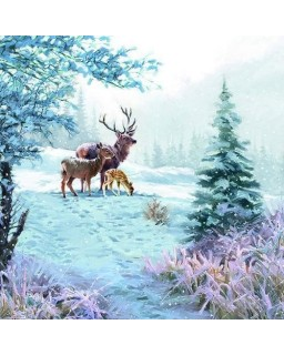 servet Hert kerst
