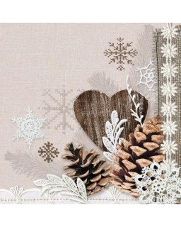 servet Winter